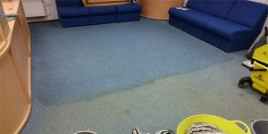 hotel carpet cleaning derby